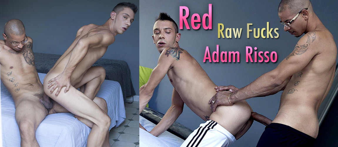 FM_adam_risso_red_WALL1